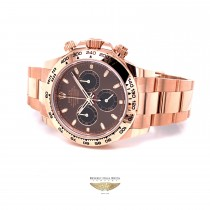 Rolex Daytona Everose Chocolate Dial Watch 116505 MP89YH - Beverly Hills Watch Company
